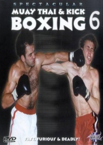 Muay Thai And Kick Boxing - Vol. 6