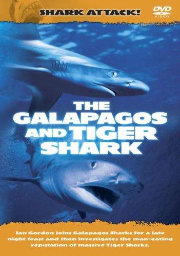 Shark Attack - Shark Attack - The Galapagos And Tiger Shark