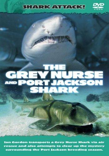Shark Attack - The Grey Nurse And Port Jackson Shark