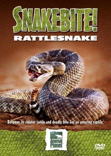 Snakebite! - Snake Bite - Rattlesnakes