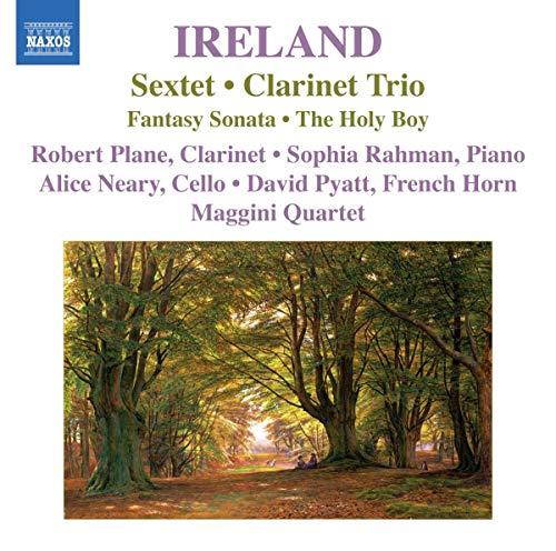 Maggini Quartet - Ireland:  Sextet; Clarinet Trio, Fantasy Sonata, The Holy Boy