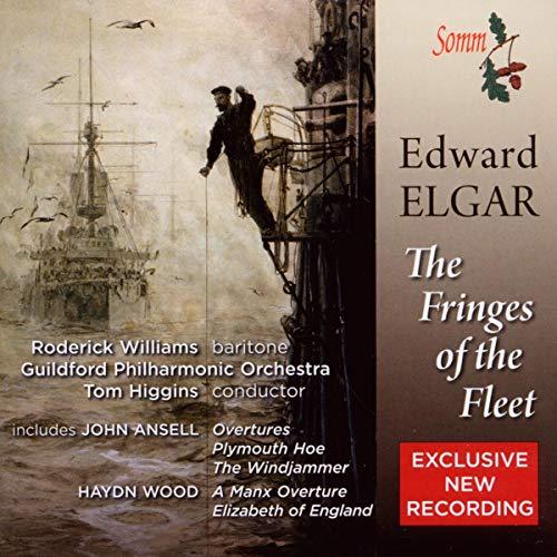 Tom Higgins - The Fringes of the Fleet