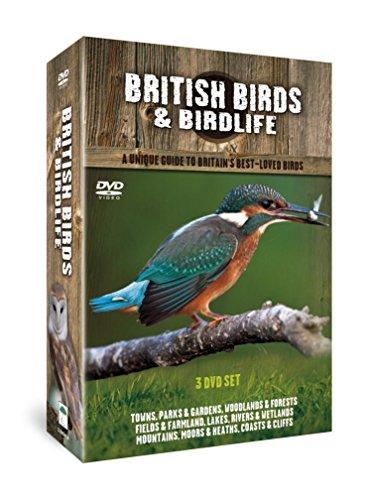 Best of British Birds Collection