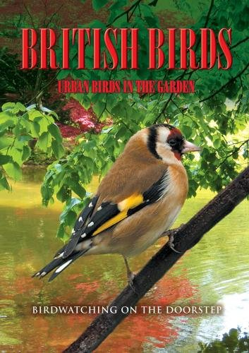 British Birds - British Birds: Volume 2 - Urban Birds