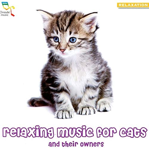 Tshinar - Relaxing Music For Cats And Their Owners By Tshinar
