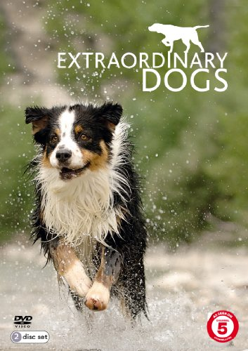 Extraordinary-Dogs-DVD-CD-OYVG-FREE-Shipping