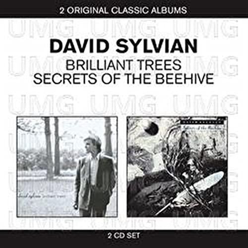 David Sylvian - Brilliant Trees / Secrets Of The Beehive