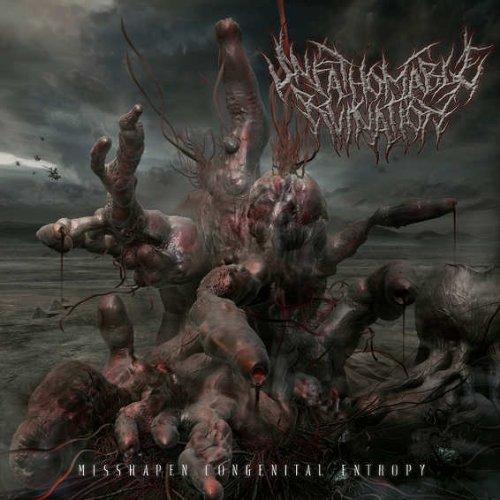 Unfathomable Ruination - Misshapen Congenital Entropy By Unfathomable Ruination