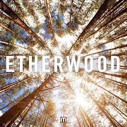 Etherwood - Etherwood By Etherwood