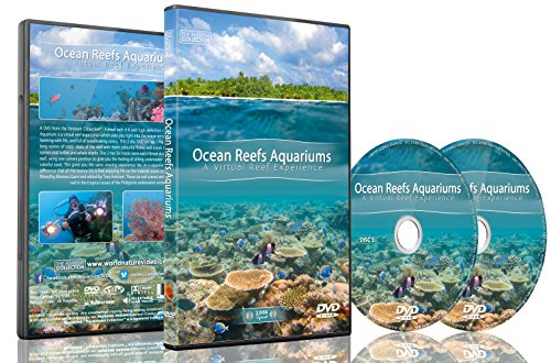 Aquarium DVD - Ocean Reef Aquarium - A Relaxing Virtual Experience in Underwater World