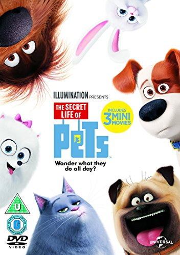 The Secret Life Of Pets (DVD + Digital Download)