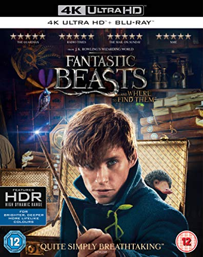 Blu-ray1 - Fantastic Beasts And Where To Find Them (1 BLU-RAY)