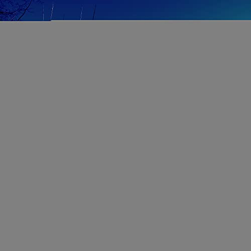 The Blue Hour By Suede