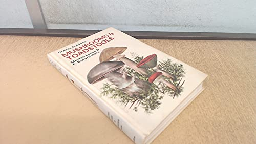 Field Guide to Mushrooms and Toadstools by Morton Dance