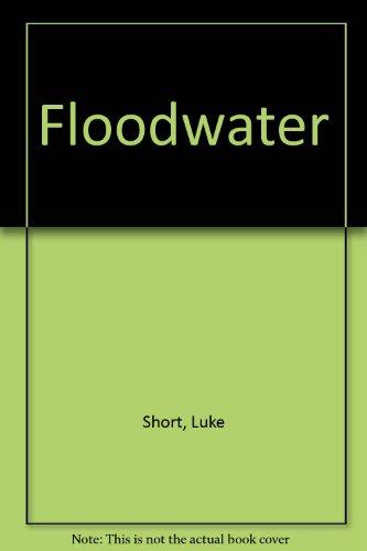 Floodwater by Luke Short