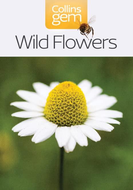 Wild Flowers by