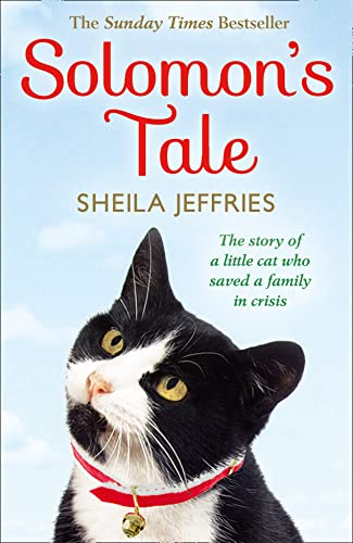 Solomon's Tale by Sheila Jeffries
