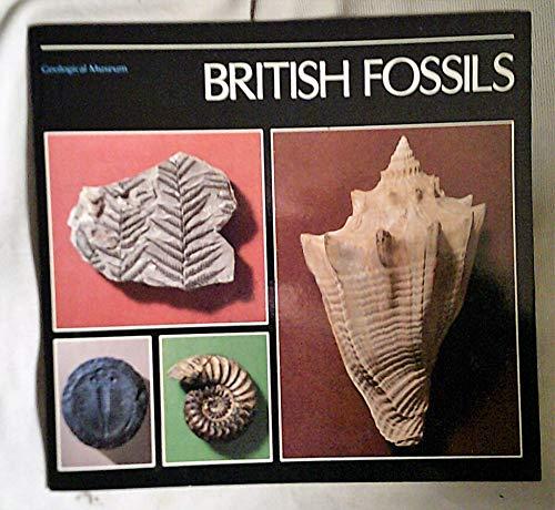 British Fossils by British Geological Survey