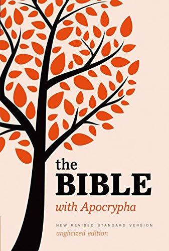 New Revised Standard Version Bible: Popular Text Edition with Apocrypha by Oxford University Press