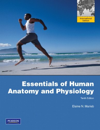 Essentials of Human Anatomy & Physiology by Elaine N. Marieb