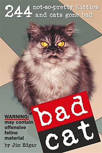 Bad Cat by Jim Edgar