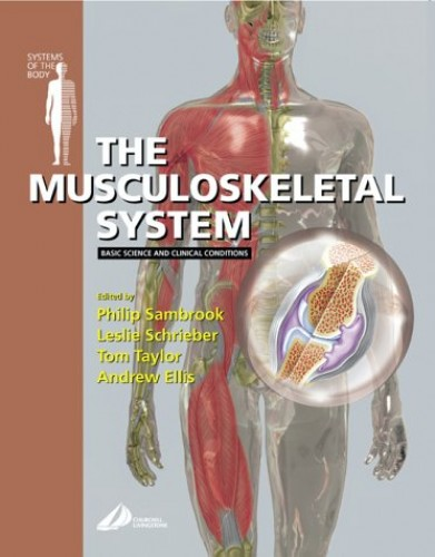 The Musculoskeletal System: Basic Science and Clinical Conditions by Professor Philip Sambrook, OAM, MD, FRACP