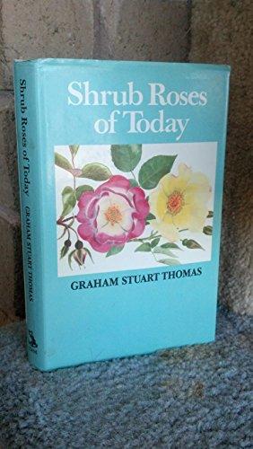 Shrub Roses of Today by Graham Stuart Thomas