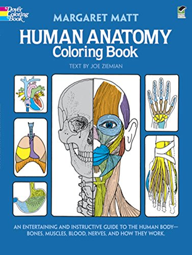 Human Anatomy by Margaret Matt