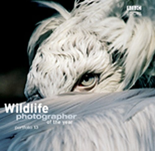 Wildlife Photographer of the Year Portfolio 13 by Harry Ricketts