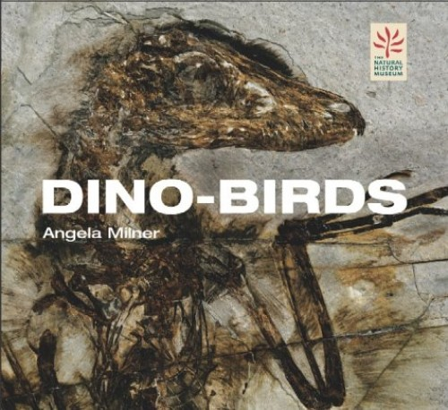 Dino-birds: From Dinosaurs to Birds by Angela C. Milner