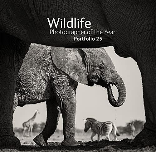 Wildlife Photographer of the Year: Portfolio 25: Portfolio 25 by Rosamund Kidman Cox
