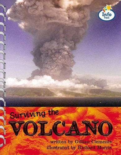 Volcano!: Book 8 by M Coles