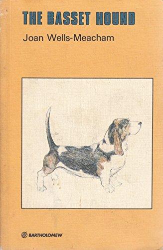 Basset Hound by Joan Wells-Meacham