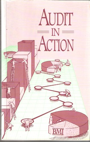 Audit in Action by Richard Smith