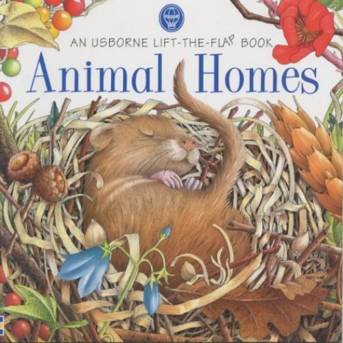 Animal Homes by Judy Tatchell