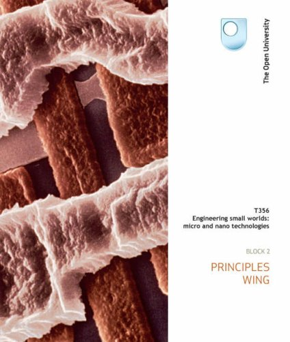 Principles Wing: Block 2 by