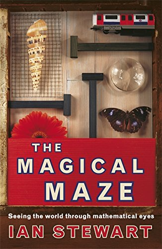 Science Masters: The Magical Maze by Ian Stewart