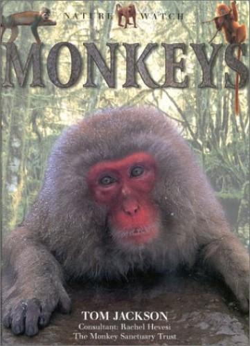 Monkeys by Tom Jackson