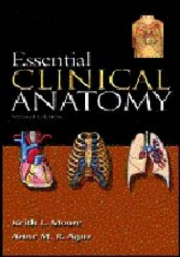 Essential Clinical Anatomy by Keith L. Moore