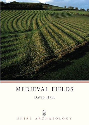 Medieval Fields by David Hall