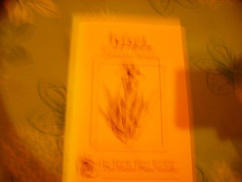 Irises by Jennifer Hewitt