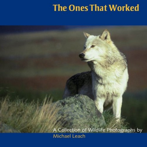 The Ones That Worked: A Collection of Wildlife Photographs by Michael Leach