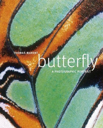 Butterfly: A Photographic Portrait by Thomas Marent