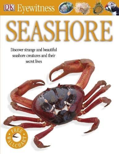 Seashore by
