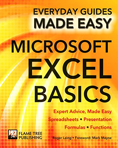 Microsoft Excel Basics: Expert Advice, Made Easy by Roger Laing