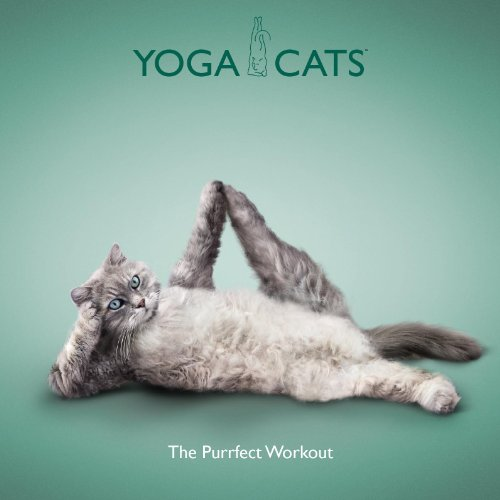 Yoga Cats: The Purrfect Workout by Daniel Borris
