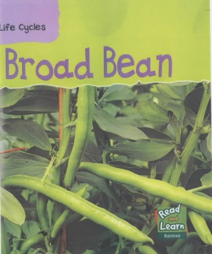 Broad Bean by Louise Spilsbury