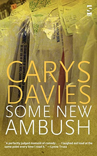 Some New Ambush by Carys Davies