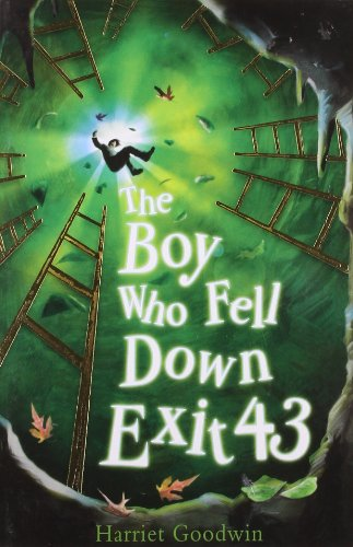 The Boy Who Fell Down Exit 43 by Harriet Goodwin