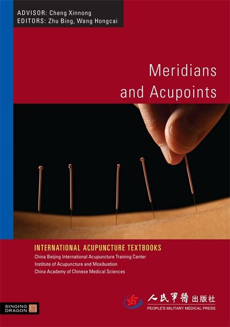 Meridians and Acupoints by Zhu Bing